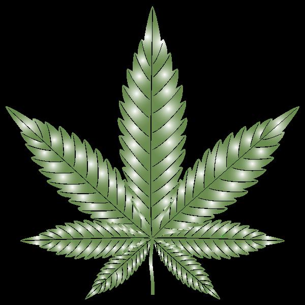 Marijuana Leaf Type II Prismatic 6