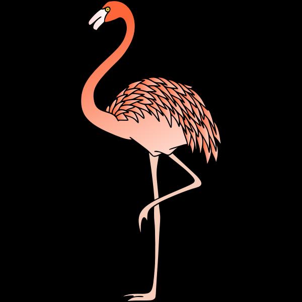 Flamingo 3 (colour)