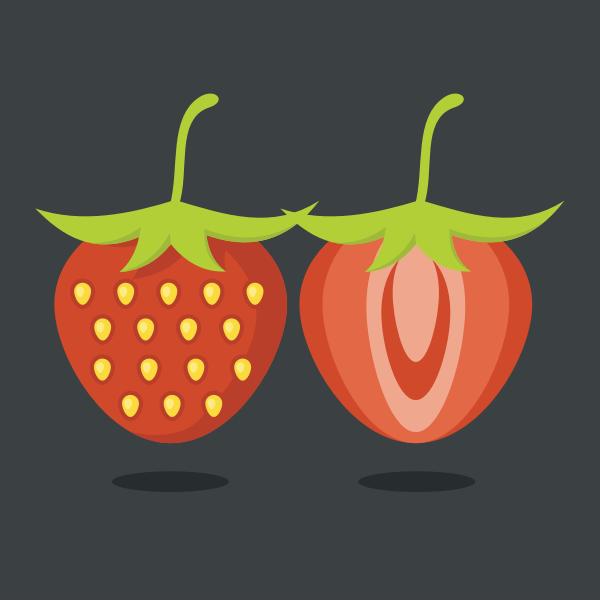 Strawberry fruit slice