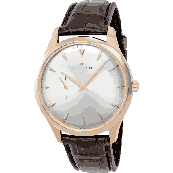 vintage classic brown swiss watch - horlogerie
