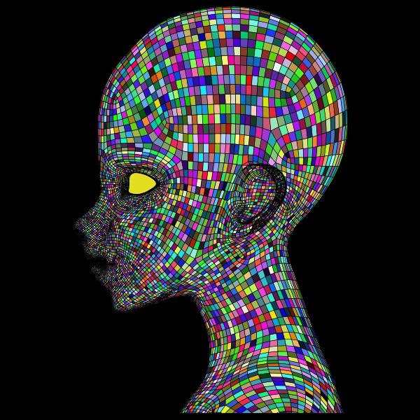 Boy Wireframe Head Prismatic