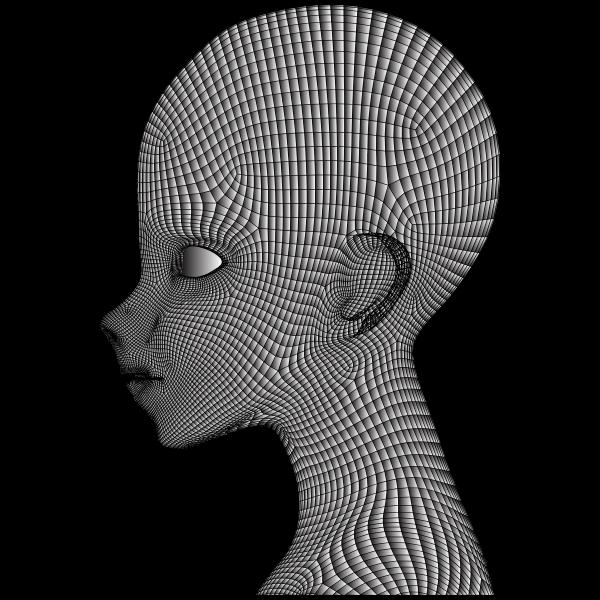 Boy Wireframe Head Duochrome