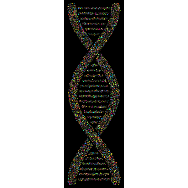 DNA Helix Circles Polyprismatic