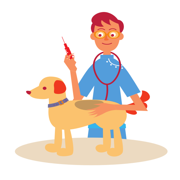 Veterinarian​ and Dog
