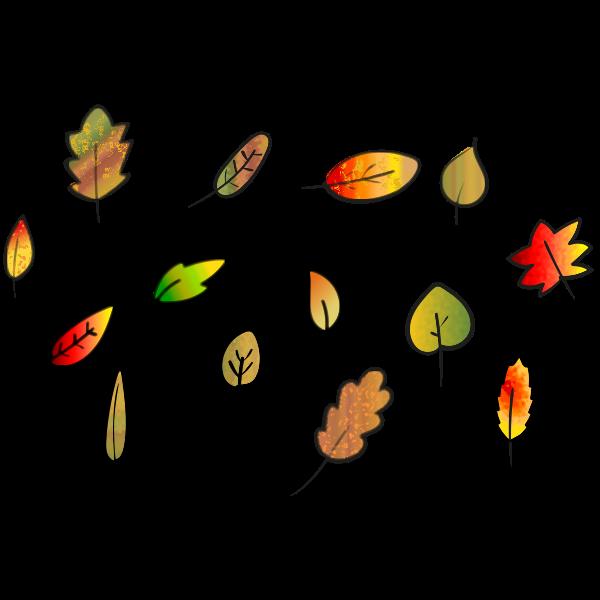 Leaves Set Autumn Colors