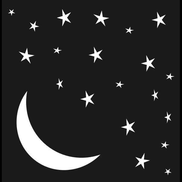 Very Starry Moonlit Night