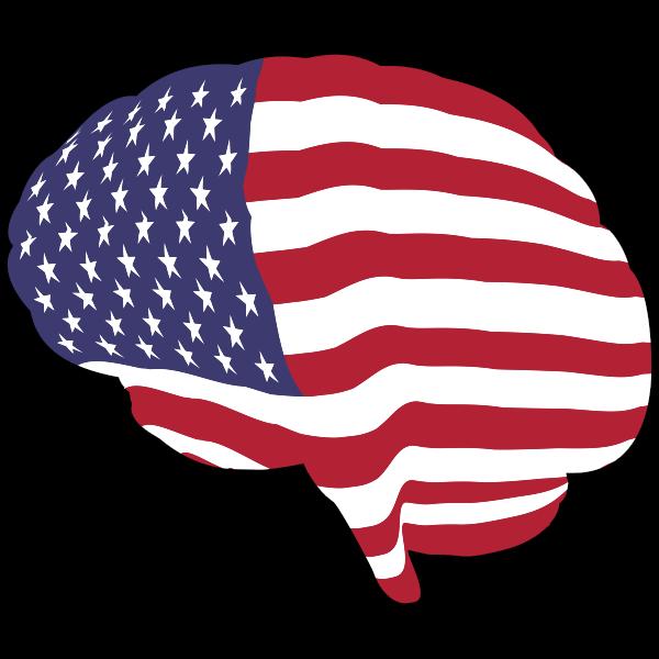 American Brain With Stroke