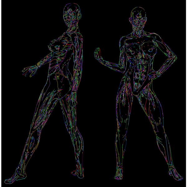 Muscular Women Line Art Prismatic