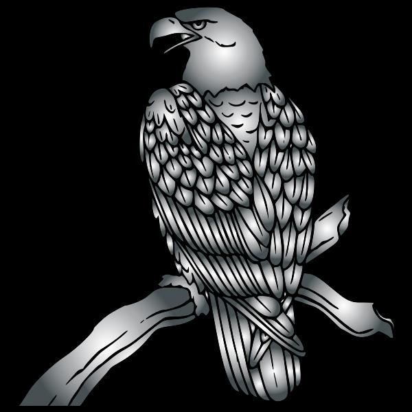 Bald Eagle Duochrome