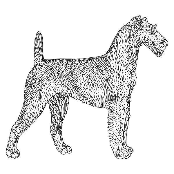 terrier lineart