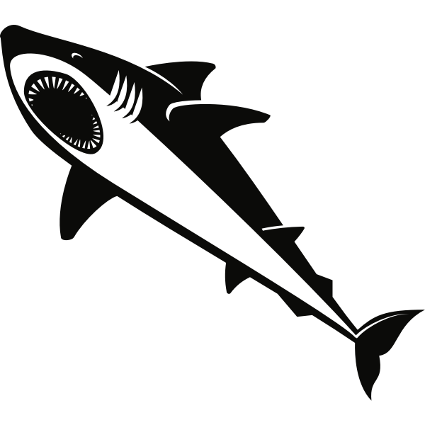 Shark silhouette graphics