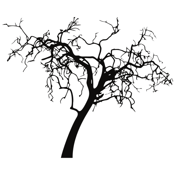 Decrepit Tree Silhouette