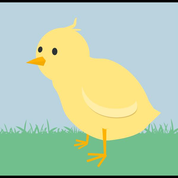 Chick Scene