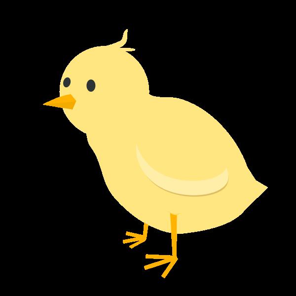 Chick Solo