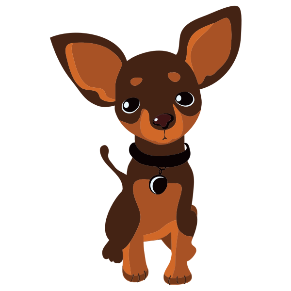 Chihuahua By BADRE44