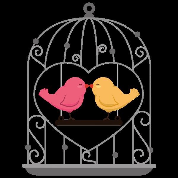 Caged Love Birds By K Malik