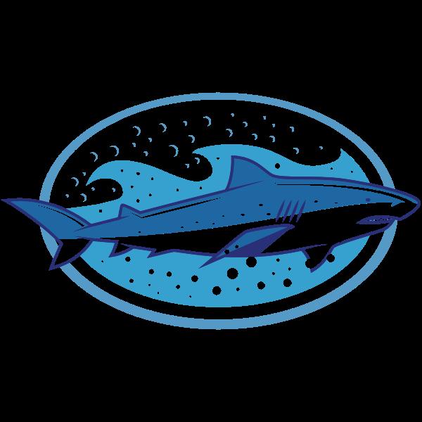 Shark (#7)