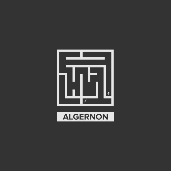 Algernon Labyrinth