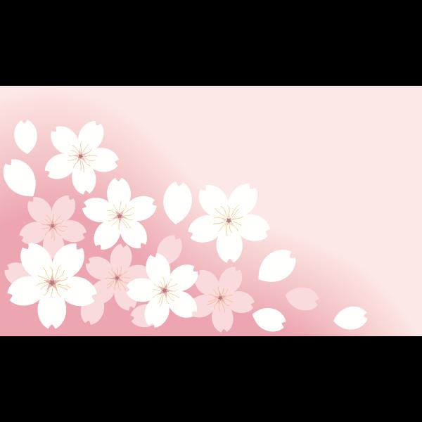 Sakura (#4)