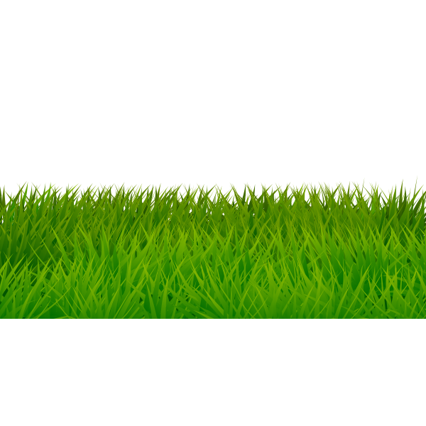 Edge with grass 01042019