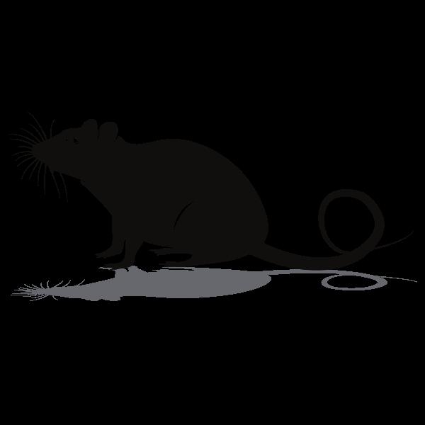 Rat silhouette clip art