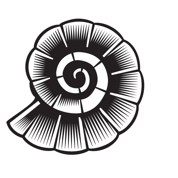 Shell silhouette monochrome art