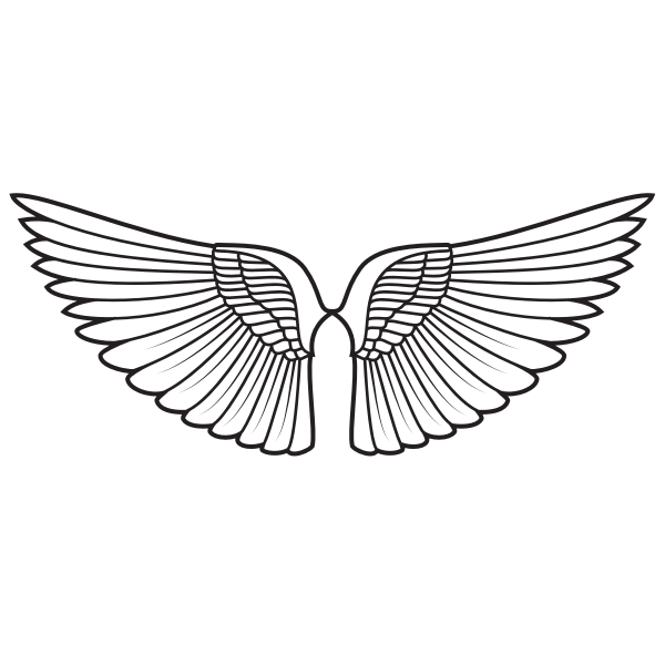 Wings silhouette monochrome