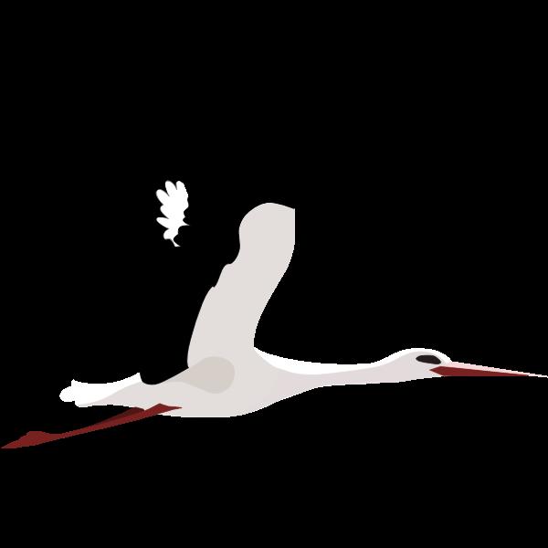 Stork fly