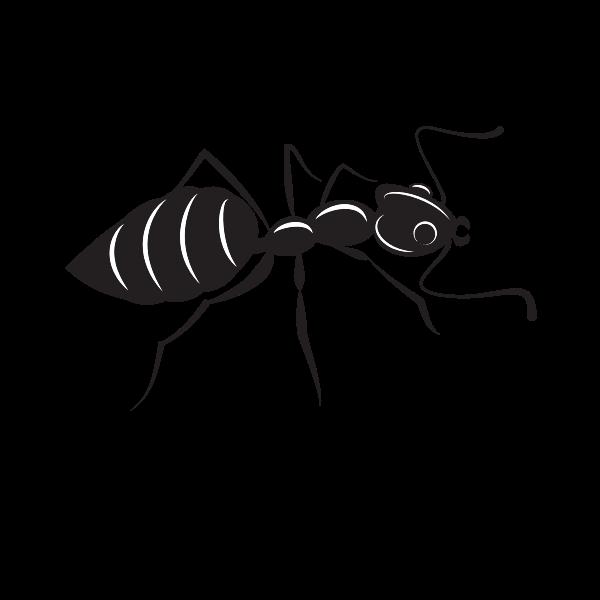 Ant  silhouette clip art