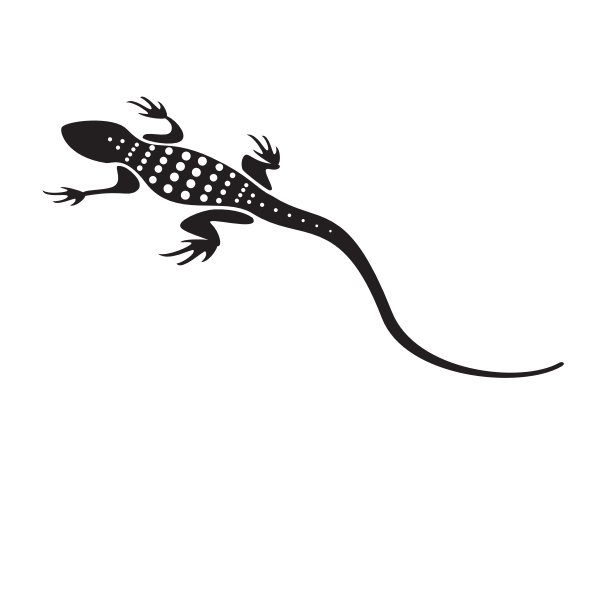 Lizard with long tail