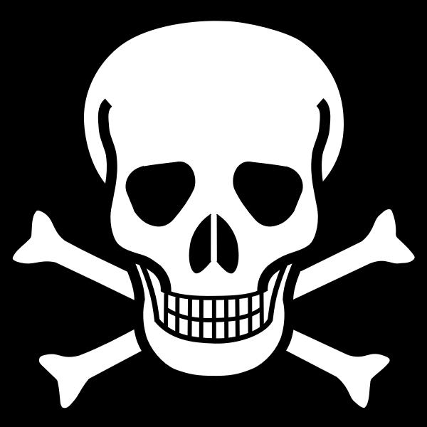skull and crossbones-1574822379