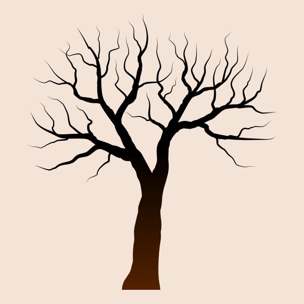 isolated tree 061220191