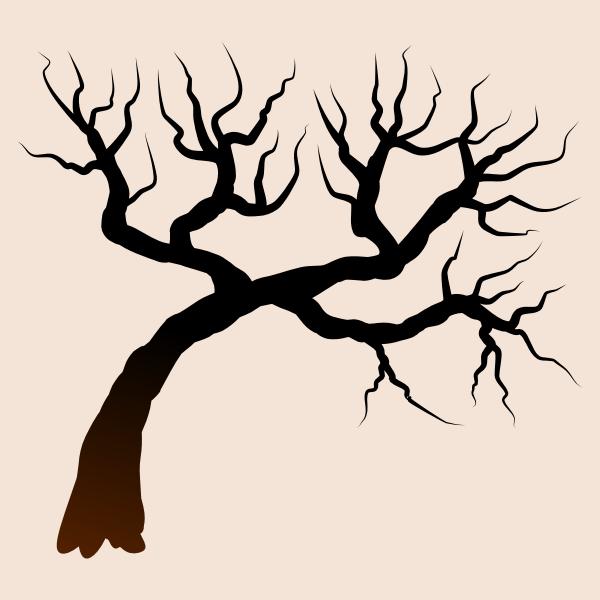 isolated tree 061220192