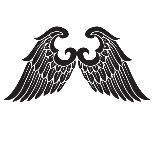Wings silhouette outline
