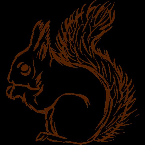 Squirrel-1577296289
