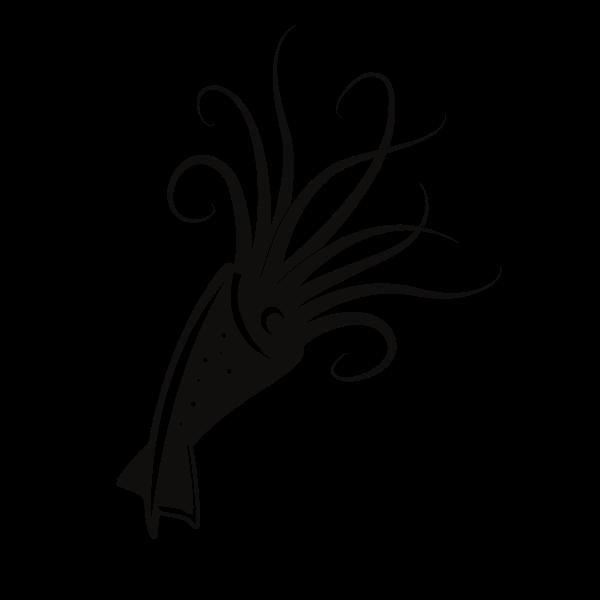 Squid silhouette