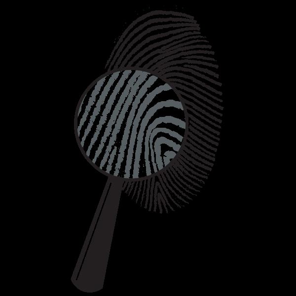 Fingerprints under the magnifying glass
