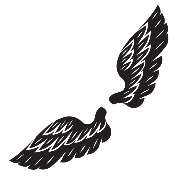 Wings silhouette graphics