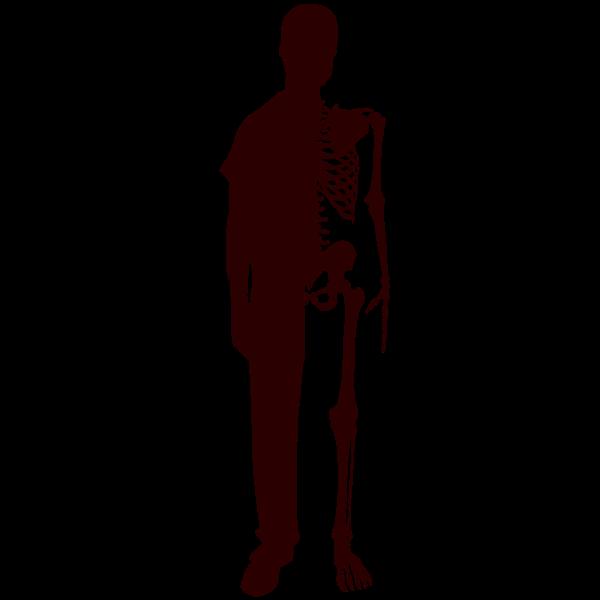 Half Skeleton Half Man