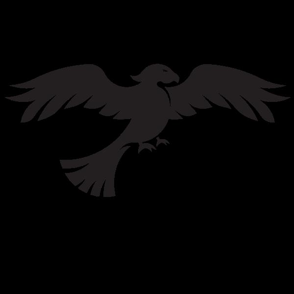 Hawk silhouette