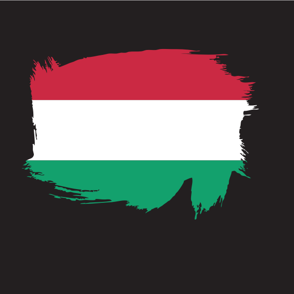 Hungarian flag painted