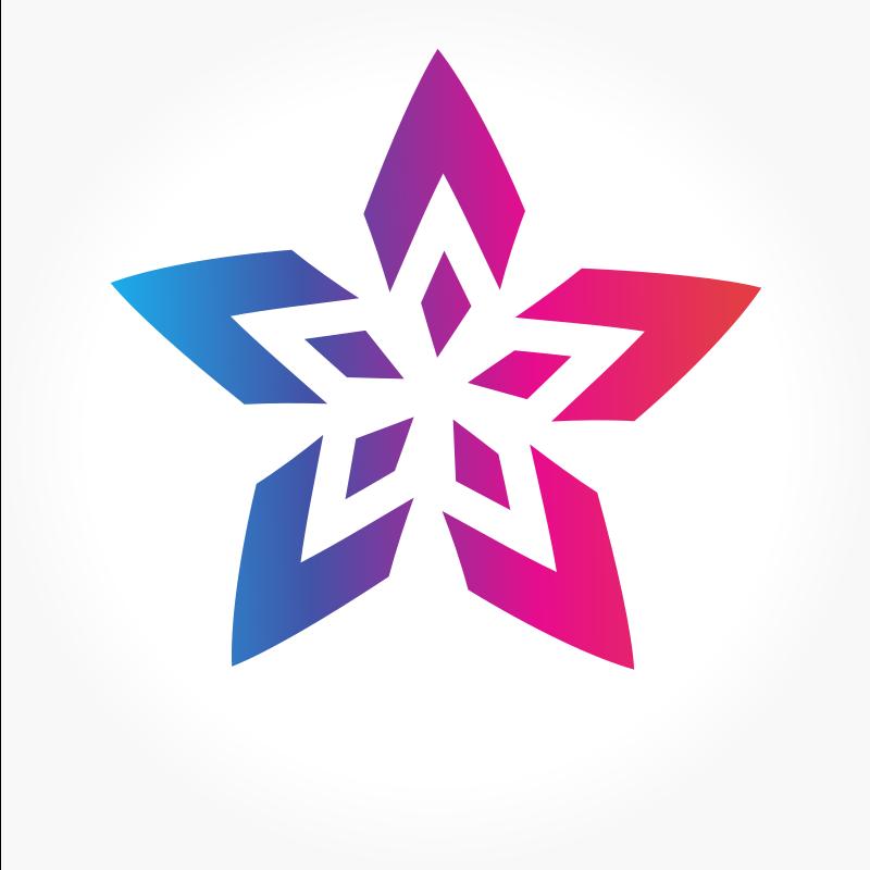 Star shape logo design element