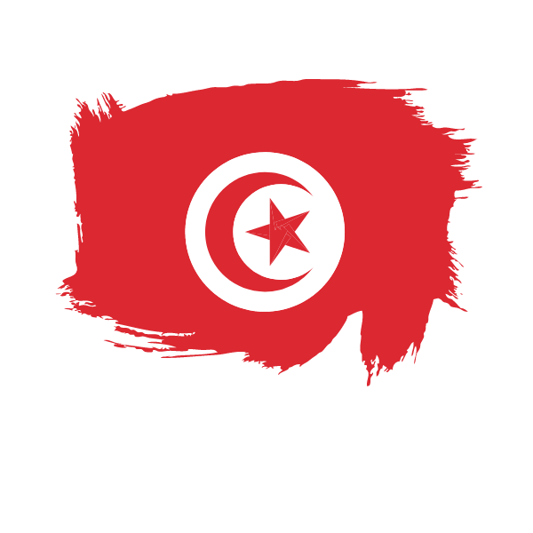 Painted flag of Tunisia