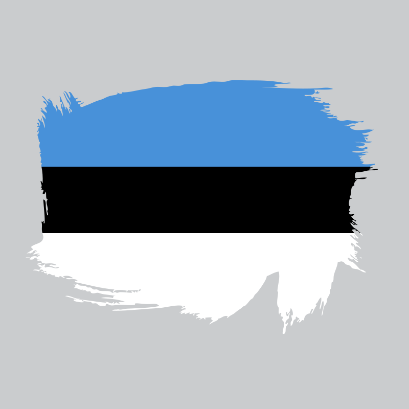 Painted flag of Estonia