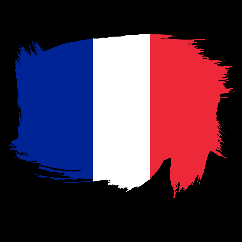 Painted flag of France