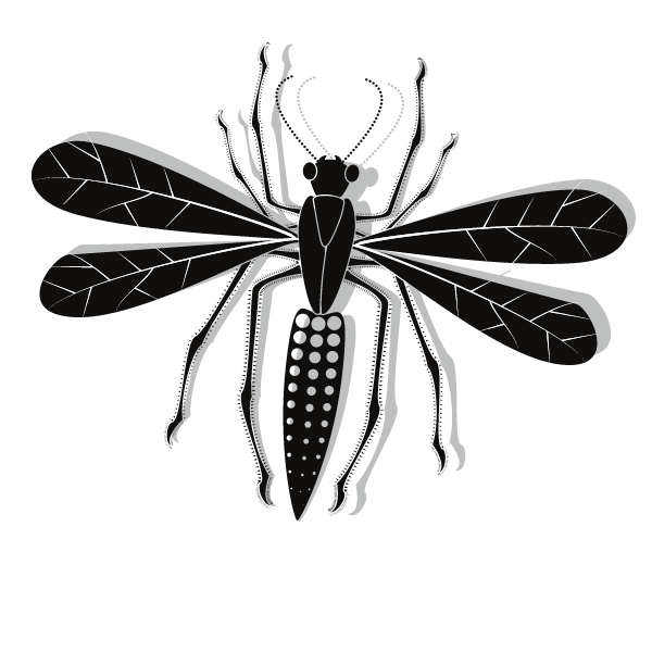 Insect vector clip art