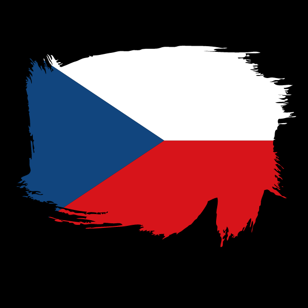 Painted flag of Czech Republic