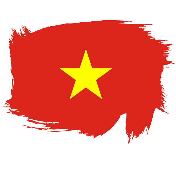 Painted flag of Vietnam