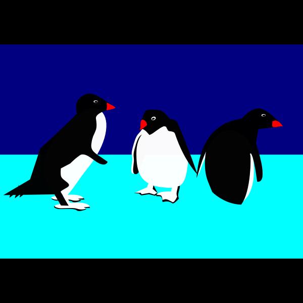 3 pinguine 1010012