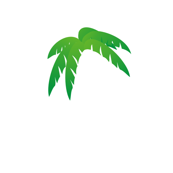 Palm's tree leaves vector illustration